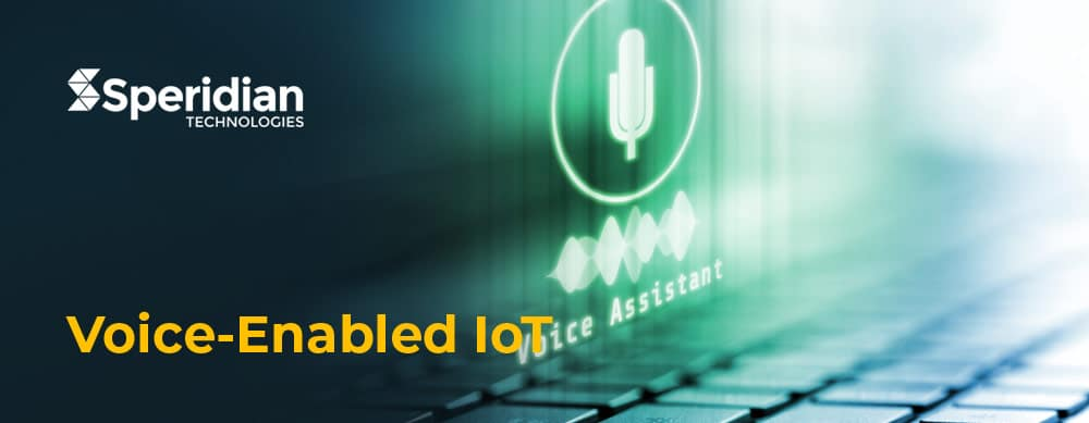 Voice-Enabled-IoT-making-your-business-smarter-Speridian-Technologies